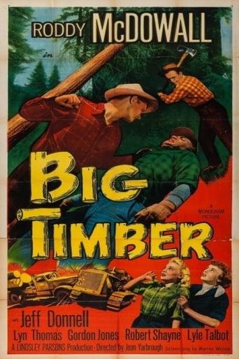 Poster of Big Timber