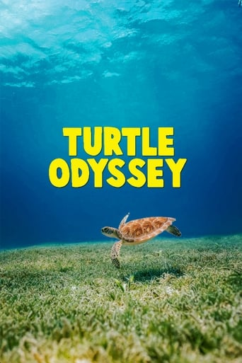 Poster of Turtle Odyssey