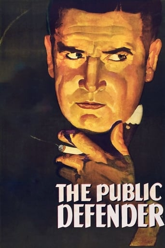 Poster of The Public Defender