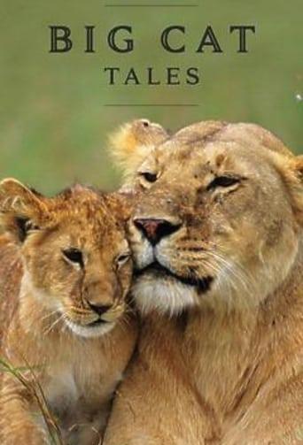 Big Cat Tales - Afrikas Raubkatzen