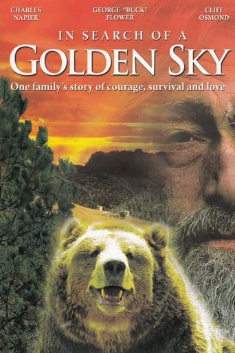 Poster of In Search of a Golden Sky