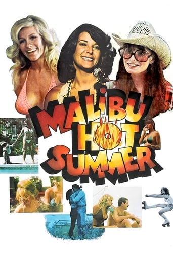 Poster of Malibu Hot Summer