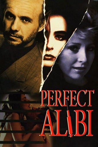Poster of Perfect Alibi