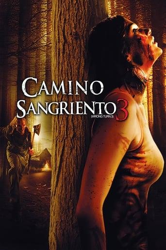 Poster of Camino sangriento 3