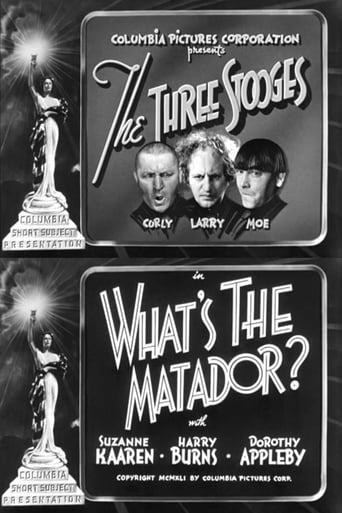 Poster of What's the Matador?