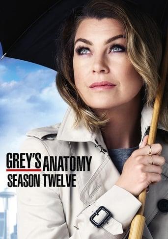 Poster de Greys Anatomy S12E18