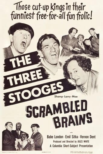 Poster of Scrambled Brains