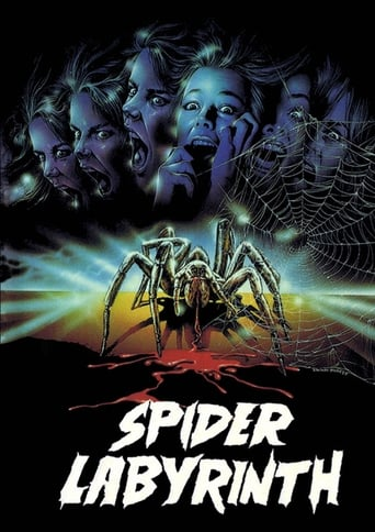Poster of The Spider Labyrinth