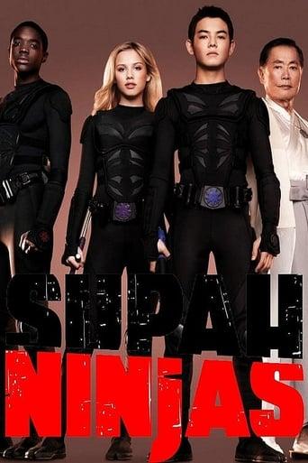 Poster of Supah Ninjas
