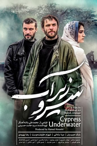 Poster of Cypress Under Water