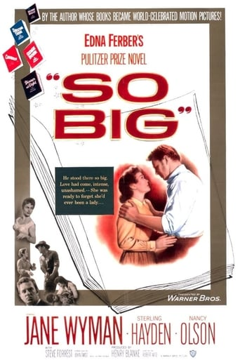 Poster of So Big