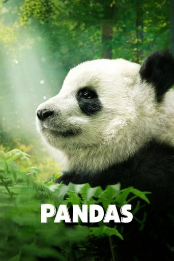 Pandas: The Journey Home poster