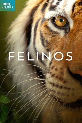 Poster of Felinos