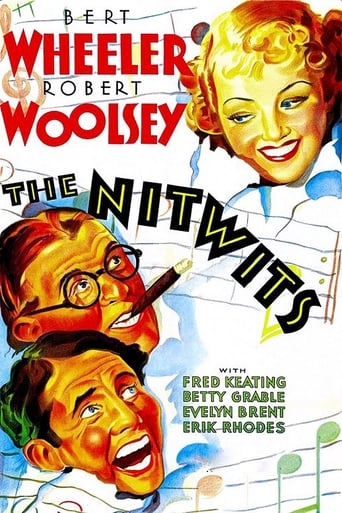 Poster of The Nitwits