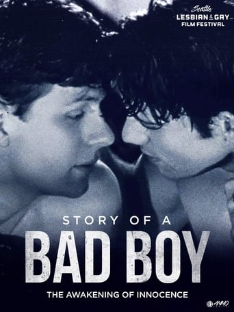 Poster of Story of a Bad Boy