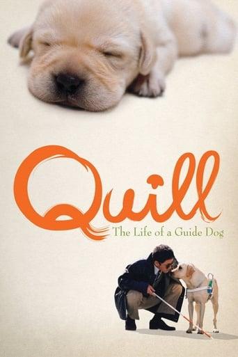 Quill - Ein Freund für´s Leben