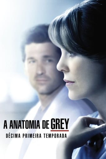 Anatomia de Grey 11ª Temporada - Poster