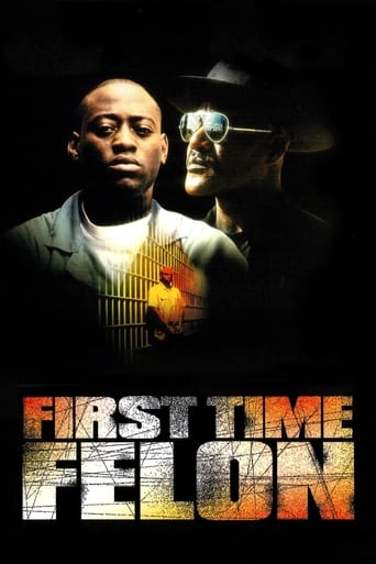 Poster of First Time Felon