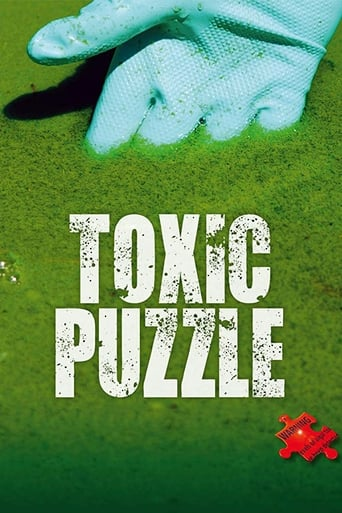 Poster of Toxic Puzzle