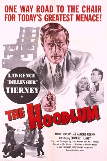 Poster of The Hoodlum