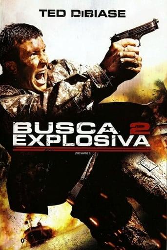 Busca Explosiva 2 - Poster