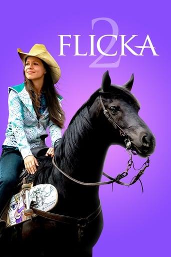 Poster of Flicka 2