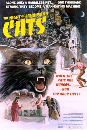 Poster of The Night of a Thousand Cats