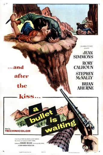 Poster of A Bullet Is Waiting