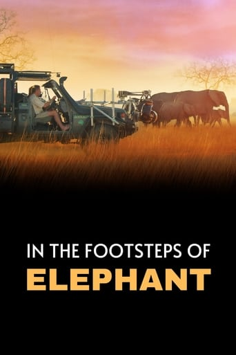 Poster of In the Footsteps of Elephant