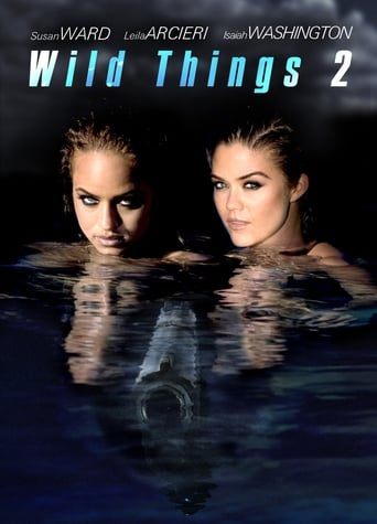 Wild Things 2 poster