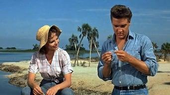 Іди за своєю мрією (1962)