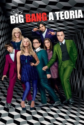 Big Bang A Teoria 6ª Temporada - Poster