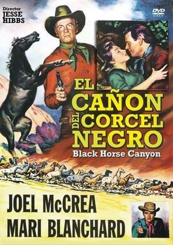 Poster of El cañón del corcel negro