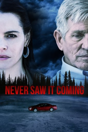 Poster of Never Saw It Coming
