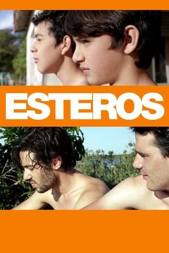 Poster of Esteros