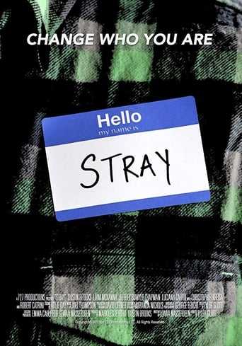 Poster of Stray