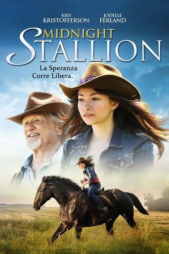 Poster of Midnight Stallion