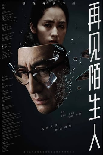 Poster of 再见,陌生人