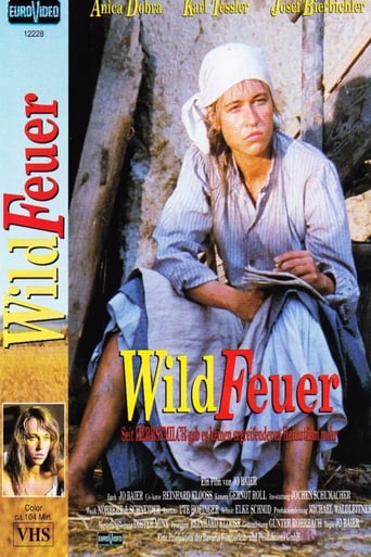 Poster of Wildfeuer
