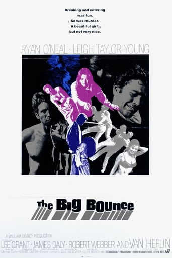 Poster of The Big Bounce