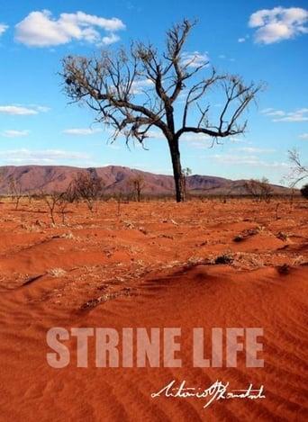 Strine Life