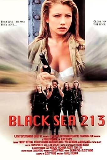 Poster of Black Sea 213