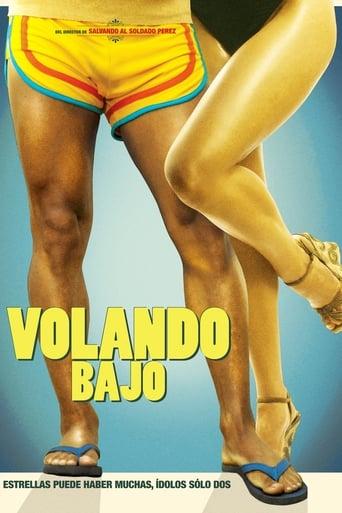 Poster of Volando bajo