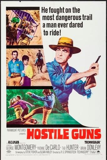 Poster of Hostile Guns