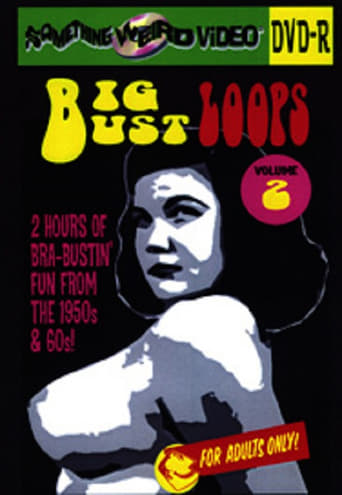 Poster of Big Bust Loops Volume 2