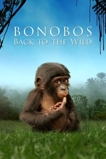 Watch Beny: Back to the Wild 2011 full online free