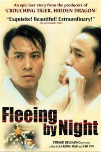 Poster of Fleeing by Night