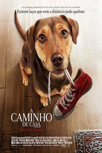 Poster of A Caminho de Casa
