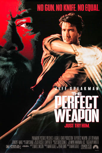 Poster of The Perfect Weapon