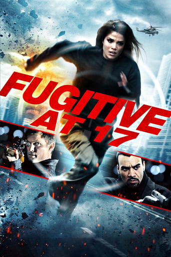 Poster of Fugitive at 17